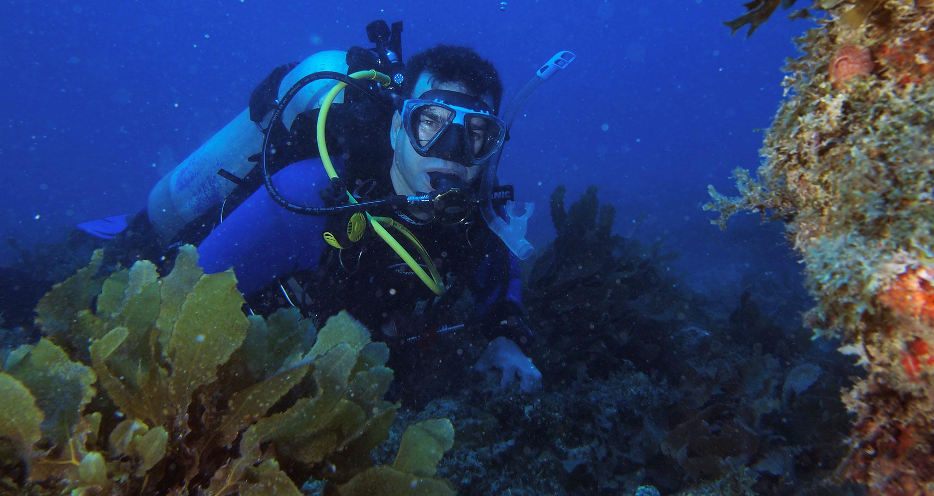 Mergulho em Maceió