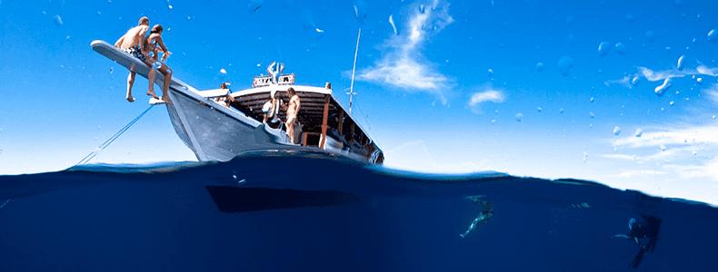 Equipamentos certos para fotos embaixo d'água