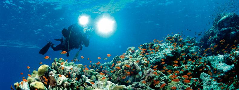Iluminação para fotos embaixo d'água