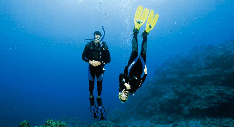 Nadadeira de Mergulho