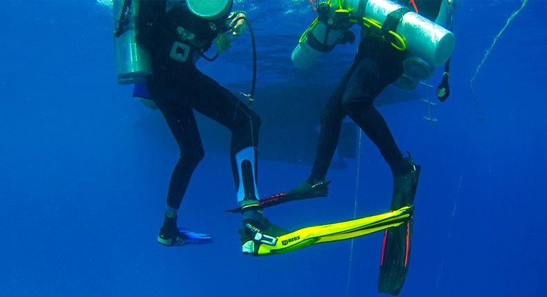 Nadadeiras de Mergulho
