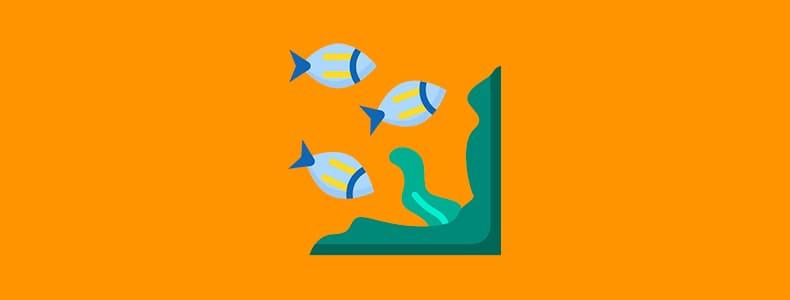 Não faz bem aos peixes