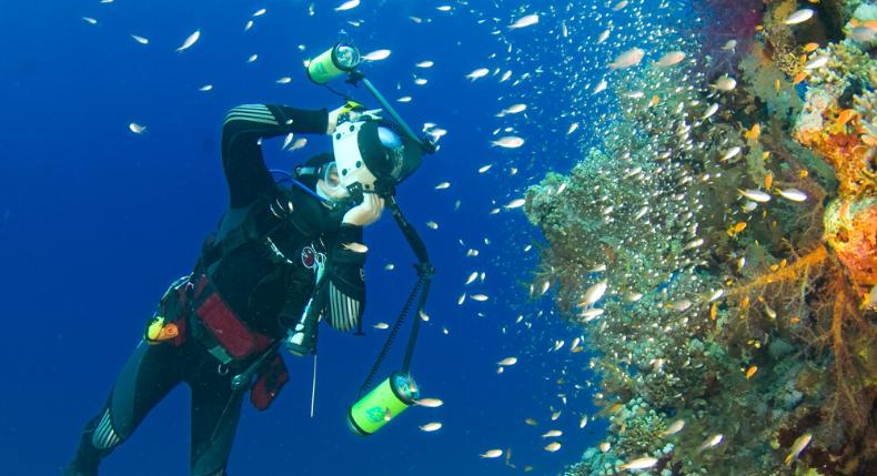 Fotografia subaquática: tudo o que você precisa saber