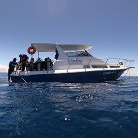Barco Let's Dive