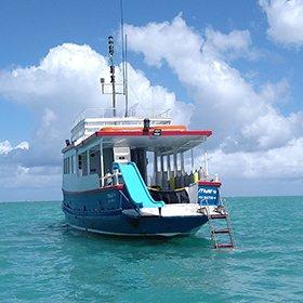 Embarcação Let's Dive