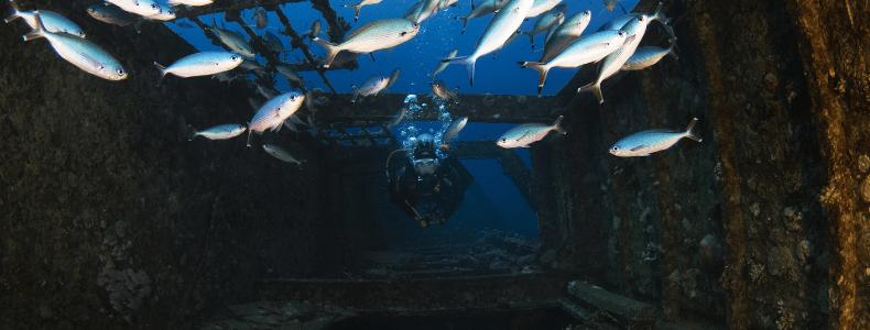 CUrso avançado de mergulho